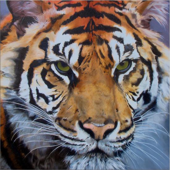 Tiger Graphics
